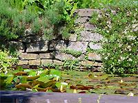 Steine Garten